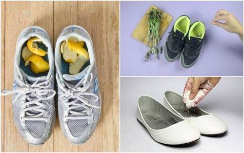 신발 냄새를 없애주는 5가지 재료
