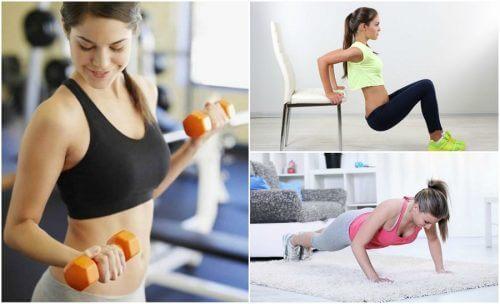 팔을 탄탄하게 만드는 6가지 간단한 운동