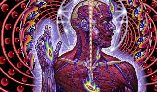 솔방울샘: 체내 주기를 조절하는 제3의 눈