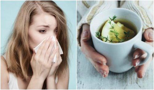 기침을 진정시키는 타임 레몬 꿀차
