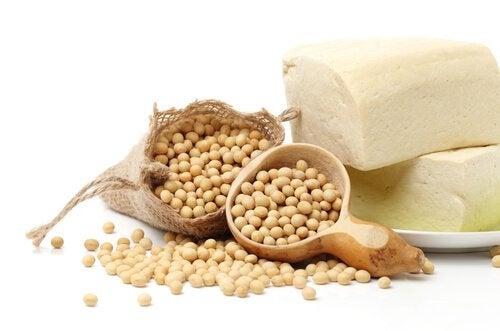 콩 더 많은 단백질을 섭취하기 위한 7가지 식품