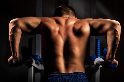 트라이셉스 딥스 팔 근육을 강화하는 3가지 운동