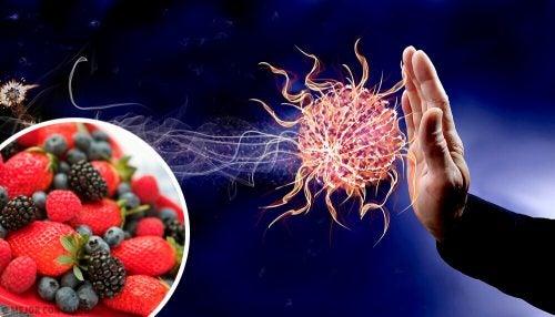 면역력을 강화하는 9가지 식품