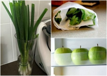 오랫동안 음식을 신선하게 유지하는 비결 9가지
