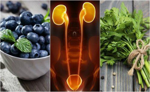 신장과 방광을 보호하는 식품 7가지