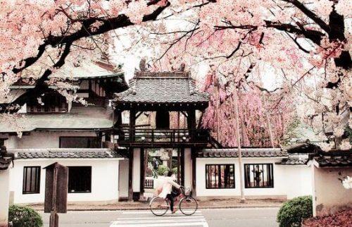 매일 행복하게 사는 일본인들의 지혜