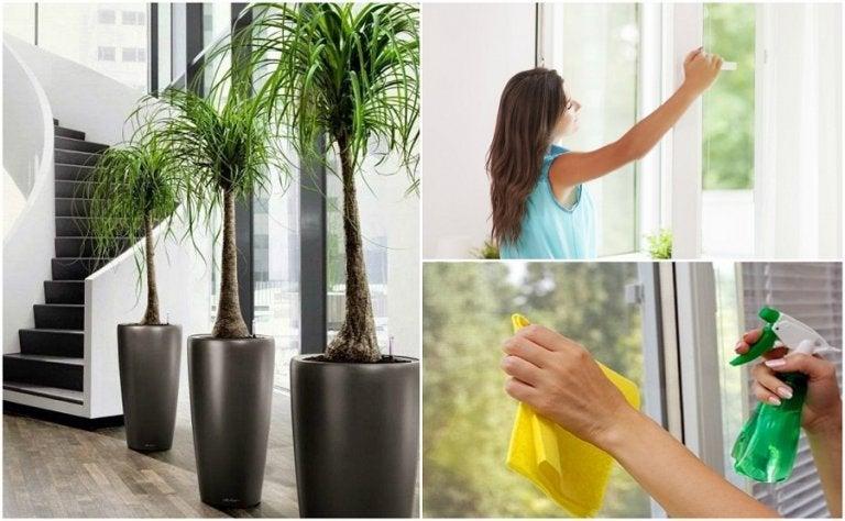 집 안 공기의 질을 개선하는 6가지 방법