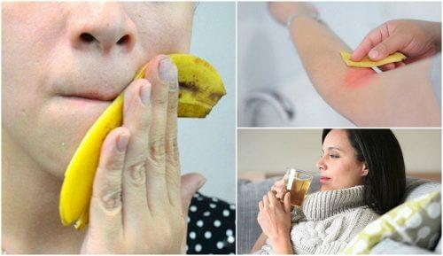 바나나 껍질을 활용하는 8가지 흥미로운 방법