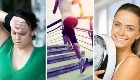 체중 조절에 영향을 줄 수 있는 호르몬