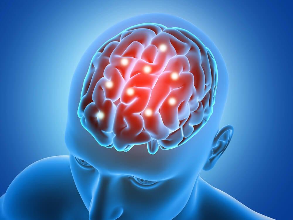 풋사과를 먹으면 뇌 건강