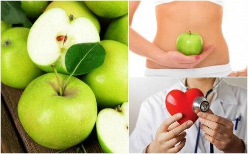공복에 풋사과를 먹으면 좋은 점 7가지