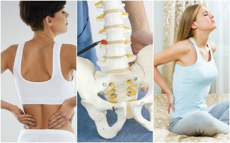 등 통증의 8가지 의학적 원인