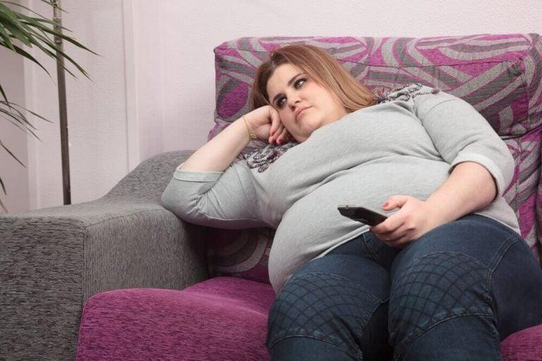 비만의 6가지 유형과 원인