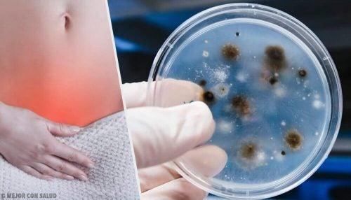 질 감염이 생기는 원인과 유형