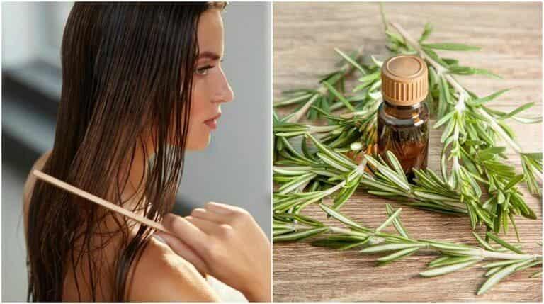 머리카락에 좋은 로즈마리의 흥미로운 효능 5가지