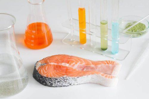 절대 먹지 말아야 할 위험한 생선 6가지