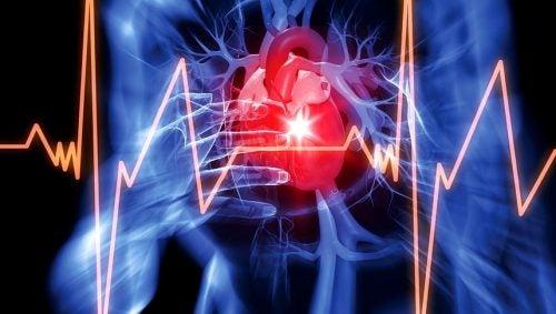 심장에 해로운 7가지 습관