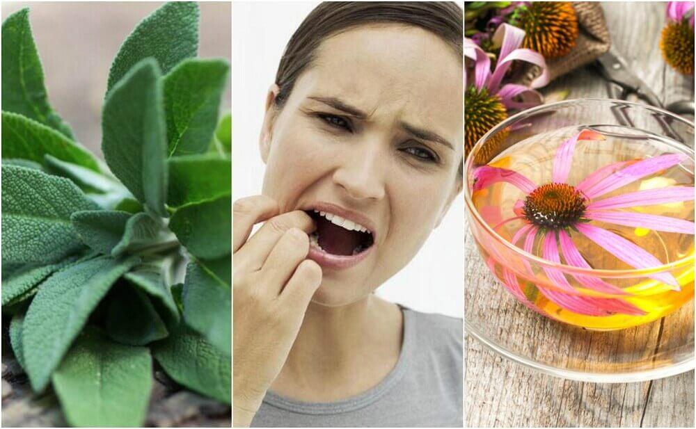 치은염을 퇴치하기 위한 자연 요법 5가지