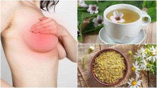 유방 통증을 완화하는 5가지 자연 치유법