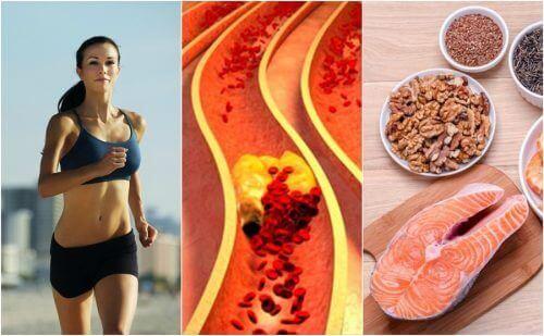 콜레스테롤을 관리하는 건강한 습관 6가지