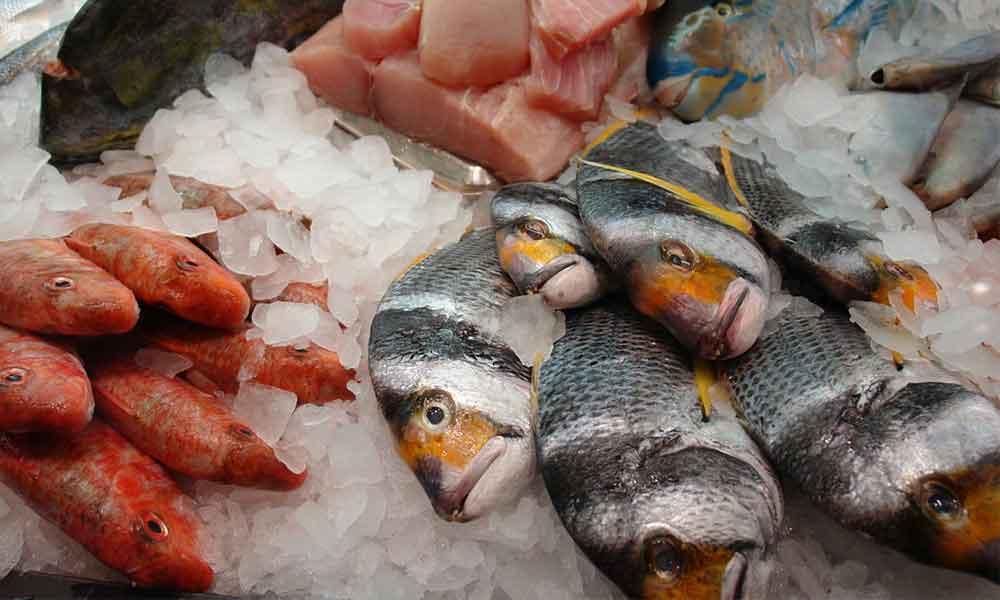 수은과 생선