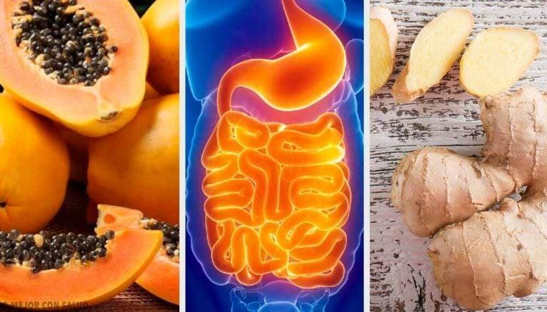 소화 문제를 진정시켜주는 과일과 허브