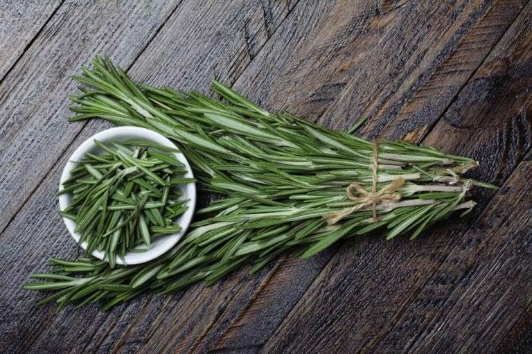 관절염 치료를 위한 5가지 약초 요법 로즈마리