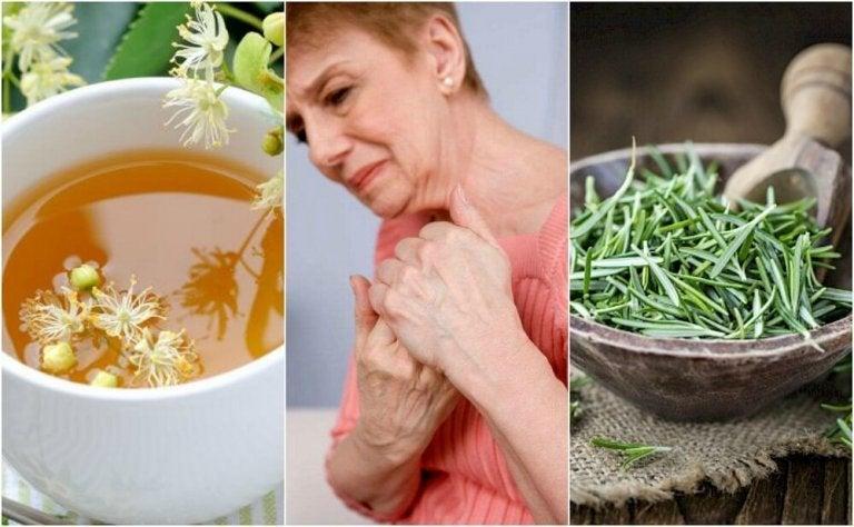 관절염 치료를 위한 5가지 약초 요법