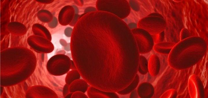 혈액순환이 잘 되게 하는 방법