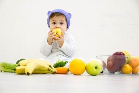 아기가 먹기에 안전한 과일은 무엇일까?