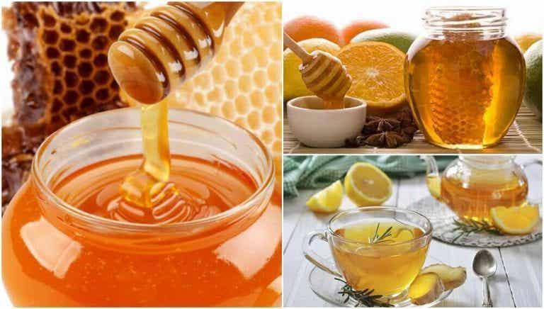 건강에 좋은 꿀의 효능을 활용하는 방법