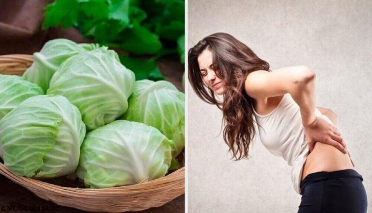 점토, 식초, 양배추잎으로 탈장을 치료하는 방법
