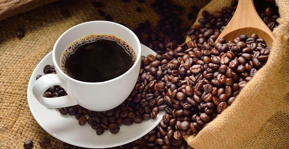 크게 두 종류의 커피가 있다