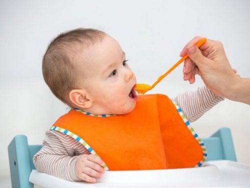 아기에게 과일 퓌레를 먹이면 좋은 점