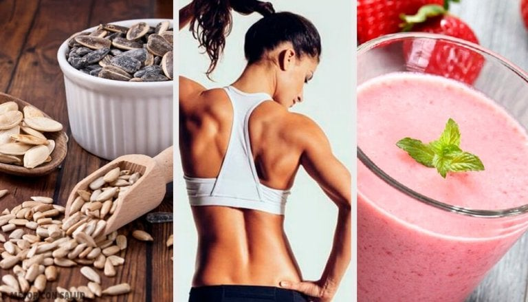 채식을 실천하면서 근육을 만드는 방법