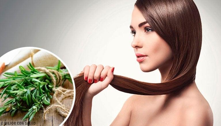 모발 성장을 촉진하는 허브와 향신료