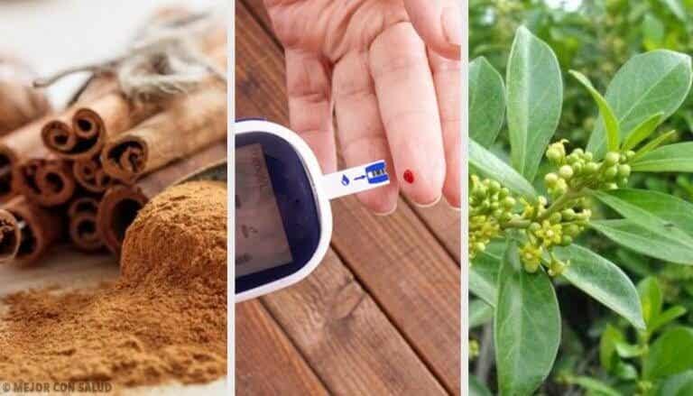 당뇨병에 유용한 5가지 약초를 먹는 법