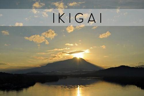 """더 나은 삶을 위한 일본식 비밀, """"이키가이"""""""