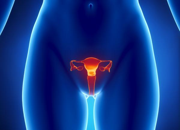 45세에도 자연 임신이 가능할까?
