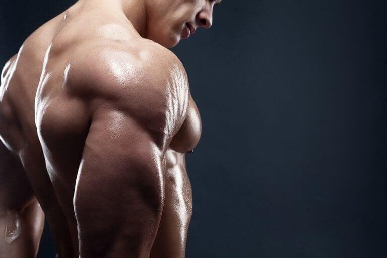 근육량을 늘려주는 맛있는 아침 식사 4가지