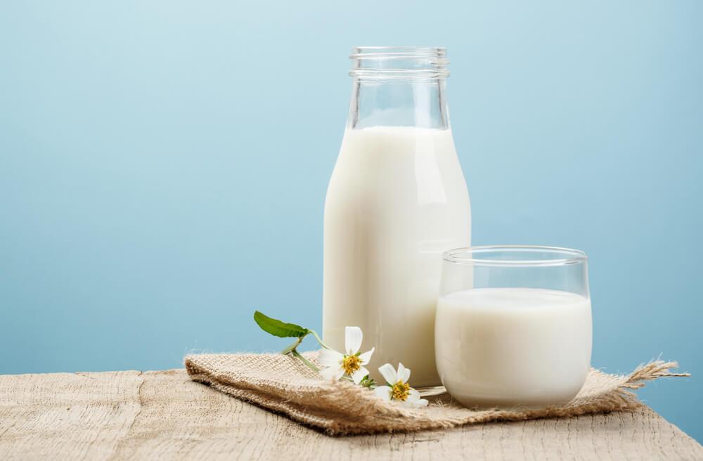 우유 대체품
