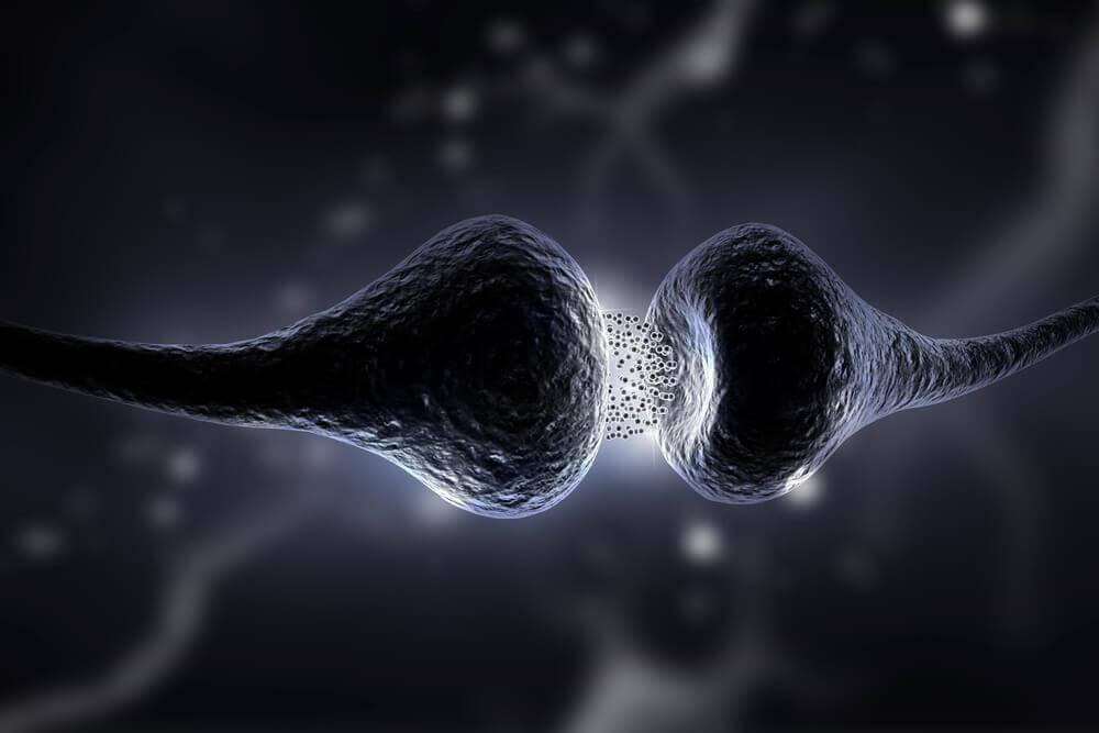 세로토닌 식이 요법과 효능