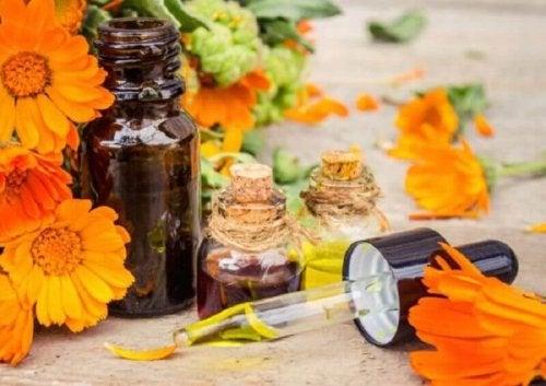 염좌 증상을 가라앉히는 데 아니카 꽃이 어떻게 도움이 될까?