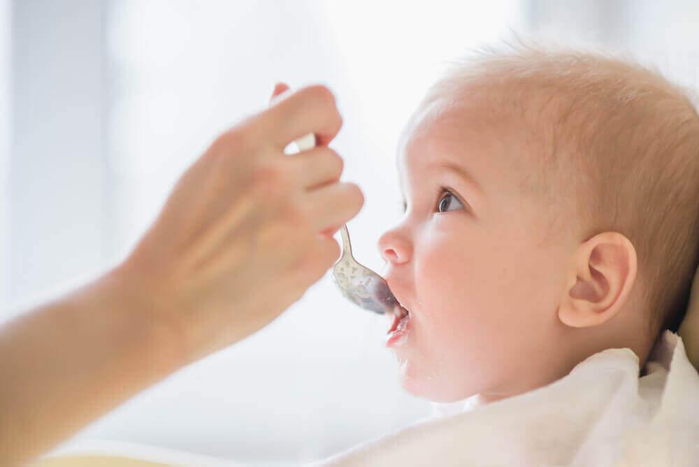 아기에게 절대 주지 말아야 할 8가지 음식