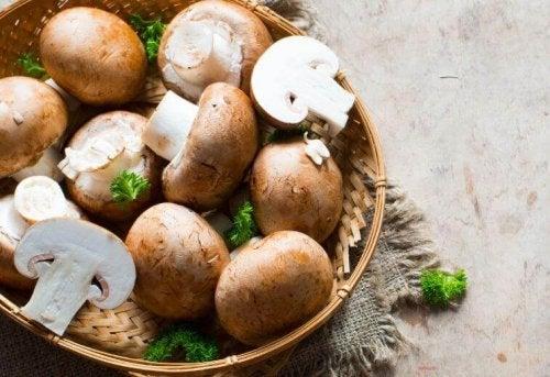 크림 소스가 들어간 버섯 요리 레시피