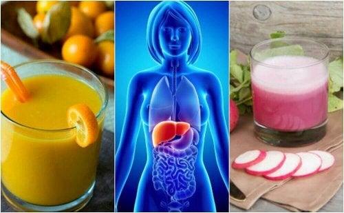 지방간을 예방하는 건강 음료 5가지