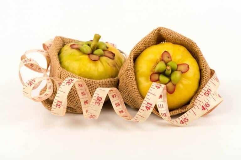 가르시니아 캄보지아: 천연 다이어트 보조제