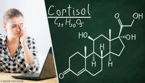 코르티솔 수치를 낮추는 천연 치유법과 건강한 습관