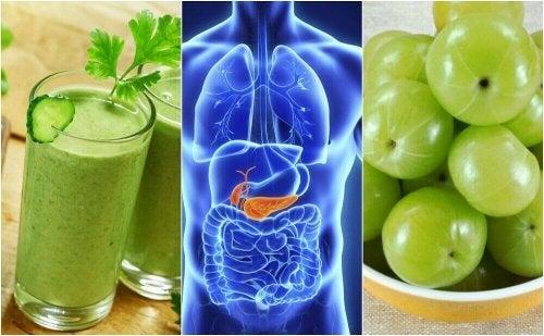 췌장을 정화하는 천연 요법 5가지