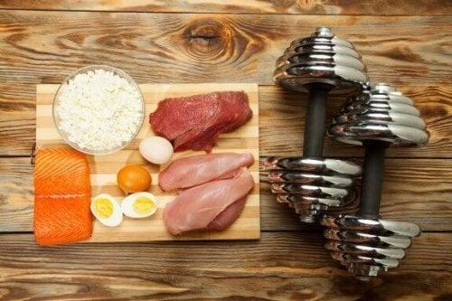 근육량을 늘리기 위해 먹어야 할 10가지 식품